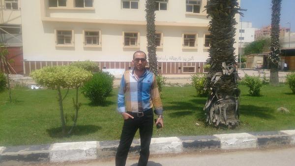 tamerelsheikh's Profile Photo