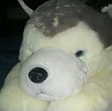 tony890705's Profile Photo