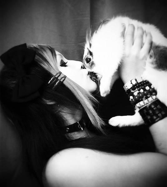 KittyCoreFeatTestesteron's Profile Photo
