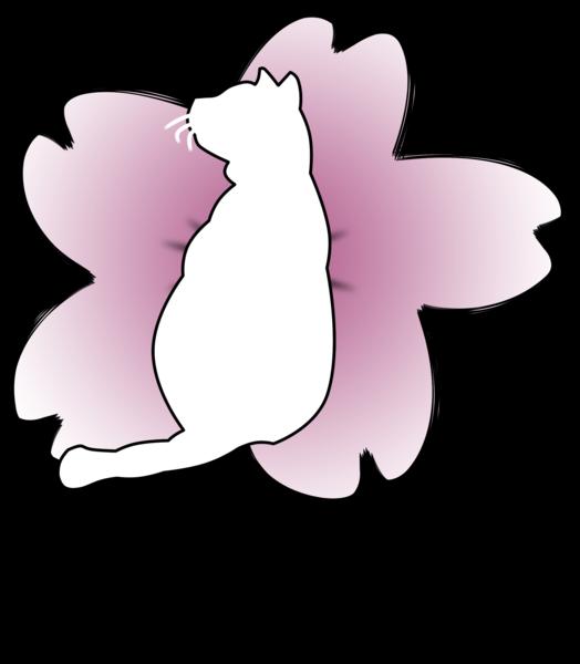 KigariCyD's Profile Photo