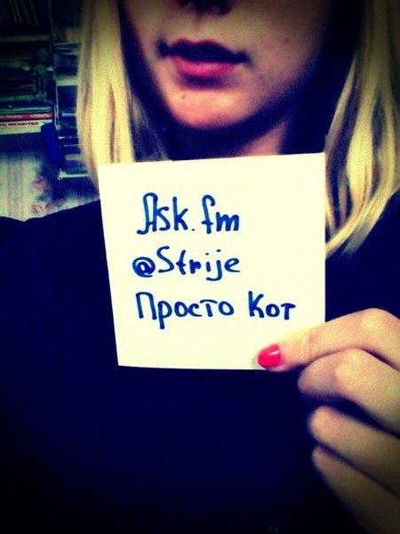 Strije's Profile Photo