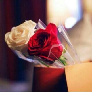 shahad__otb's Profile Photo