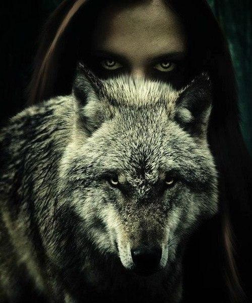 Almighty_Dark_Wolf's Profile Photo