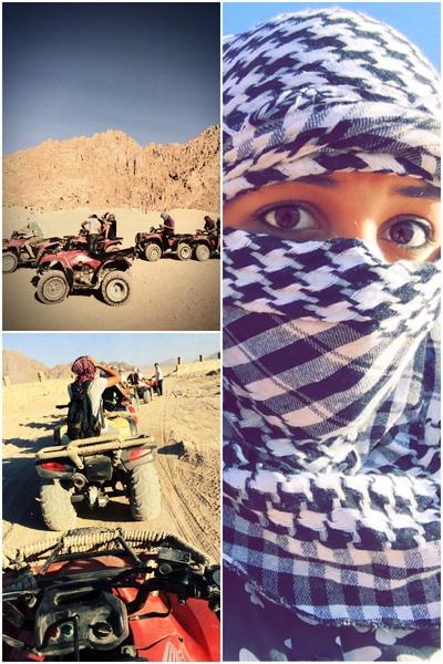 maramshaheen's Profile Photo