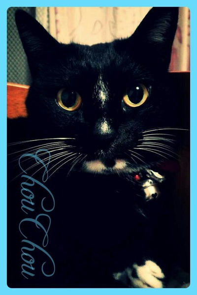 pc27NY's Profile Photo