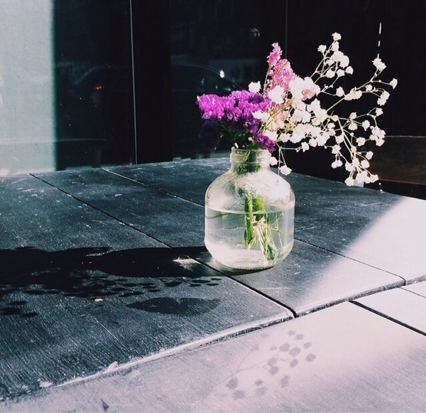 Sozan155's Profile Photo