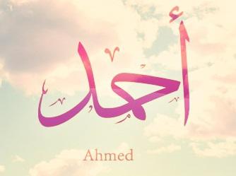 AhmedWafa's Profile Photo
