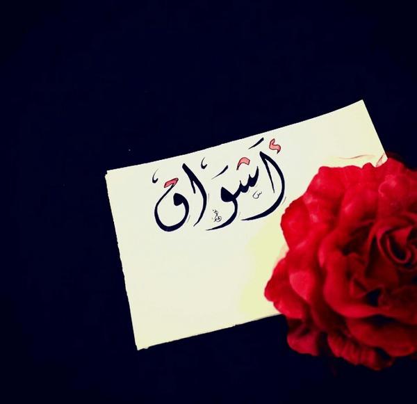 ashwaqalroo7's Profile Photo