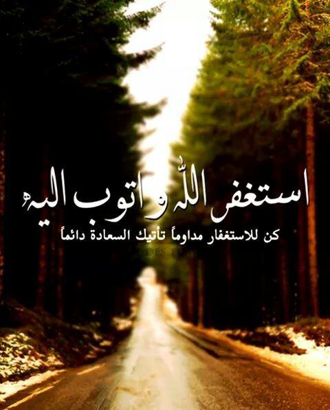 mohamedkandil65's Profile Photo
