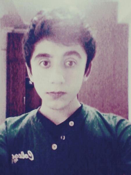 rojhat2154's Profile Photo