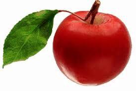 big__apple's Profile Photo