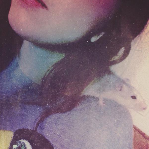 AnnaFlu's Profile Photo