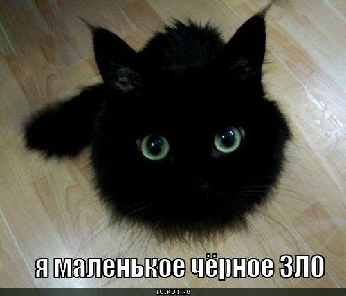 zloi_fizik's Profile Photo