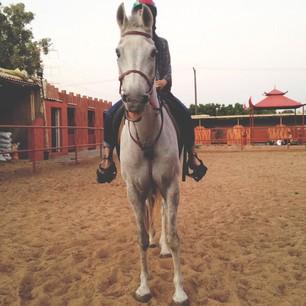 Abeer_711's Profile Photo