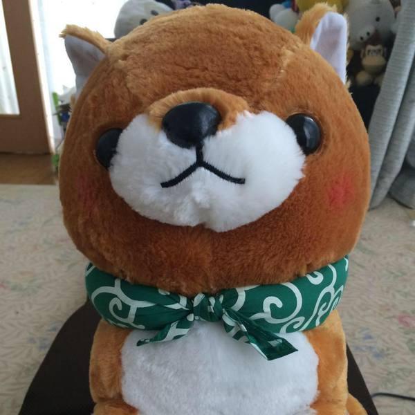 ShigenoriAyabe's Profile Photo