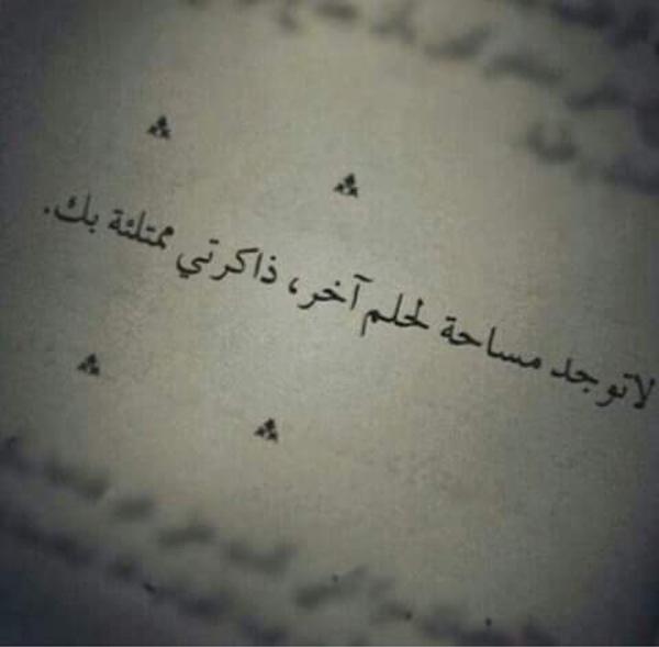 ahmedmassri's Profile Photo