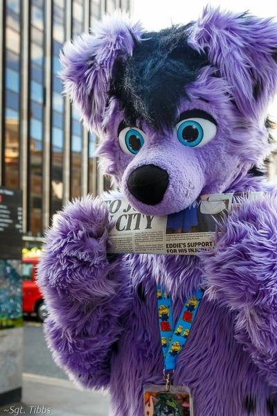 PurpleWoofer's Profile Photo