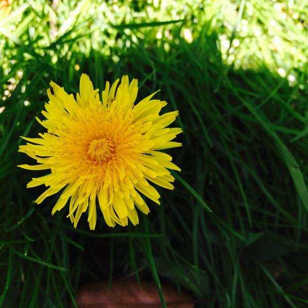 Kiana229's Profile Photo