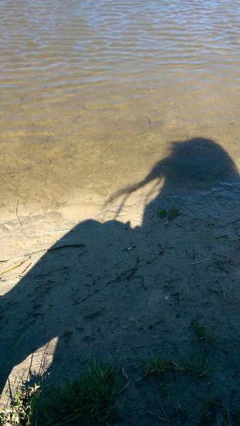 AllyKelay's Profile Photo