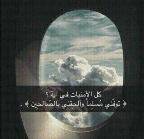 noha_2244's Profile Photo