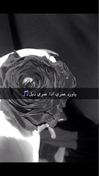 abrar_50's Profile Photo