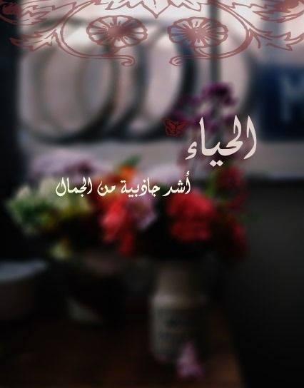 FatmaEltabakh's Profile Photo