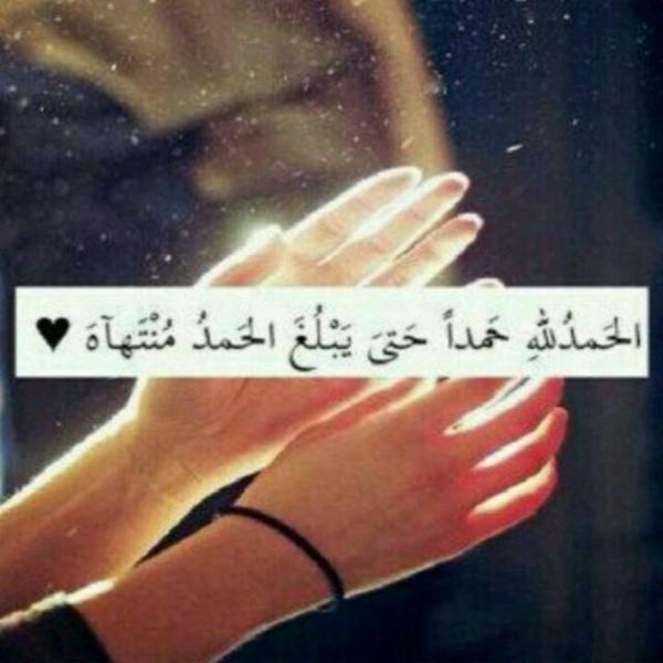 Noor4266's Profile Photo