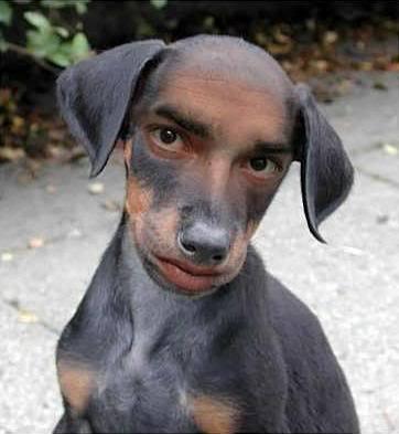 wotchlannaspadochronie's Profile Photo
