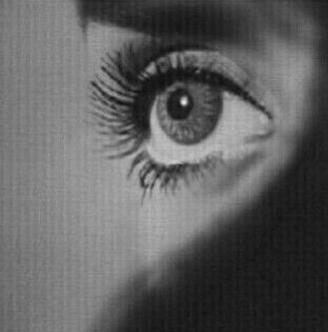 zahraa_x's Profile Photo
