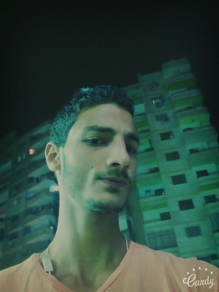 MustafaAlmahdy's Profile Photo