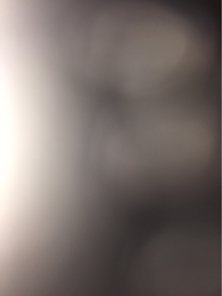 lina192837465's Profile Photo