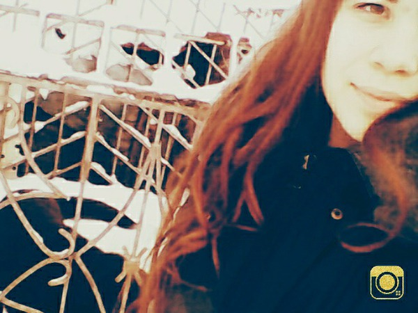 KRistina_ms_makhadova's Profile Photo