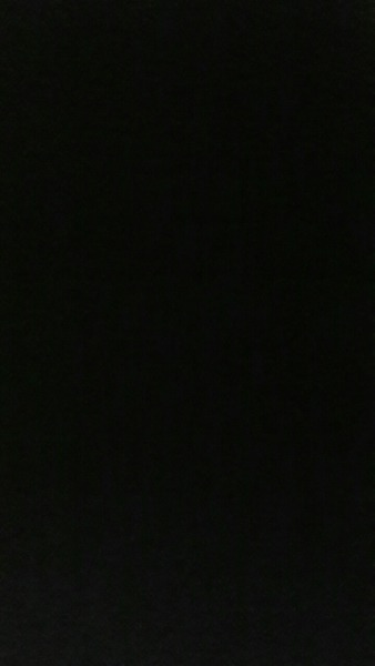jessicarepp's Profile Photo