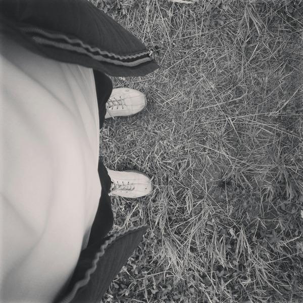 ipolarfox's Profile Photo
