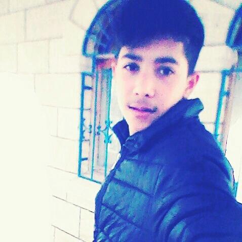 Mehmet_5445's Profile Photo
