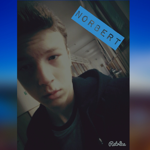 NorbertBoloni's Profile Photo