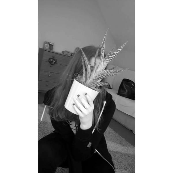 xWerou's Profile Photo