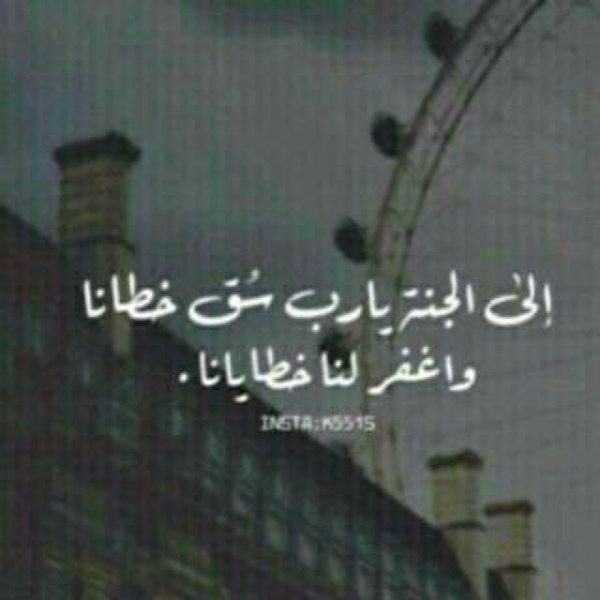 waayel's Profile Photo