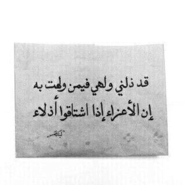 naj_alshammari's Profile Photo