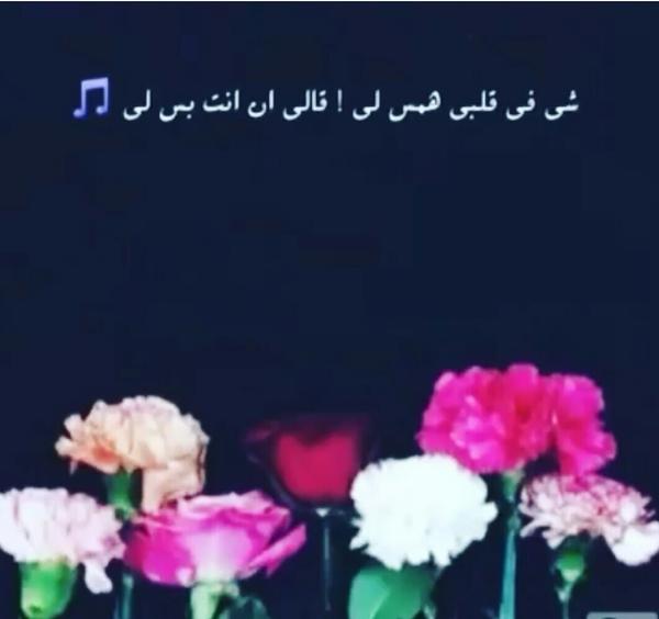 RaQad's Profile Photo