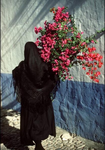 NouraAq0's Profile Photo