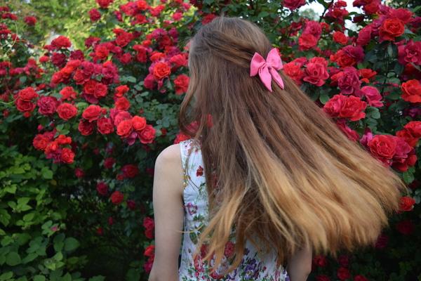 allisa_liss's Profile Photo
