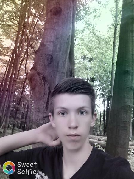 NorbertXDX's Profile Photo