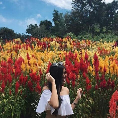SyilansyRiska's Profile Photo