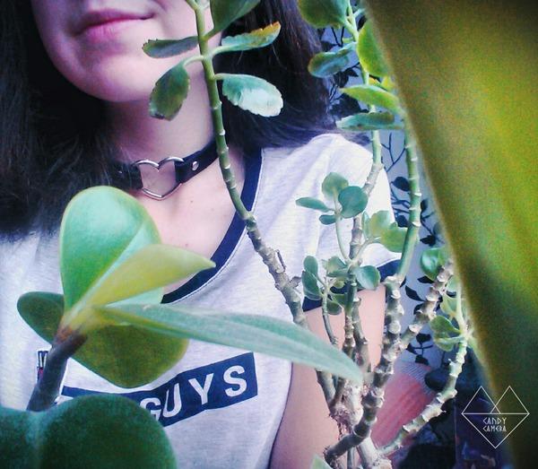 Sima666Galdikaite's Profile Photo