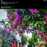 sedefsoysal92's Profile Photo