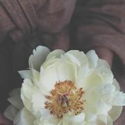 monmonabdo224950's Profile Photo