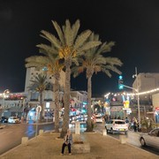 osamashanablh's Profile Photo