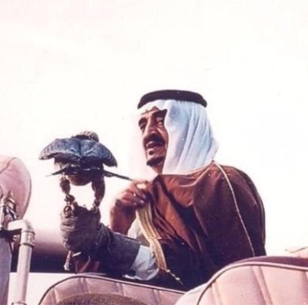 almjeed_9's Profile Photo