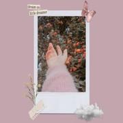 ShimaaSamirx's Profile Photo